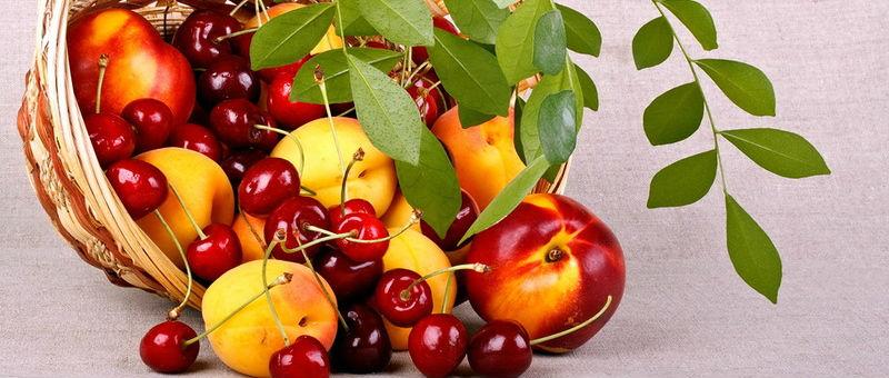 В аэропорту Казани уничтожили запрещенные фрукты