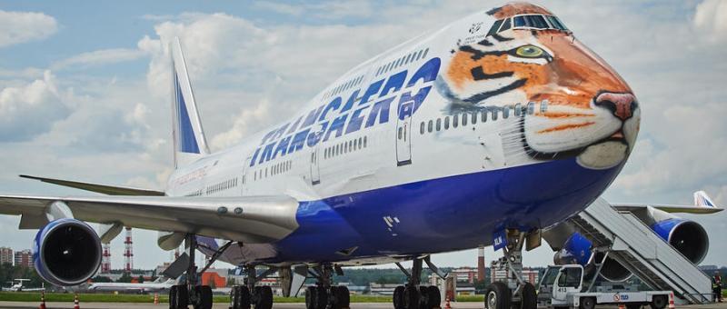 Аэропорт Владивостока отметил День Тигра