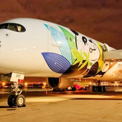 В Пулково приземлился крупнейший самолет в мире